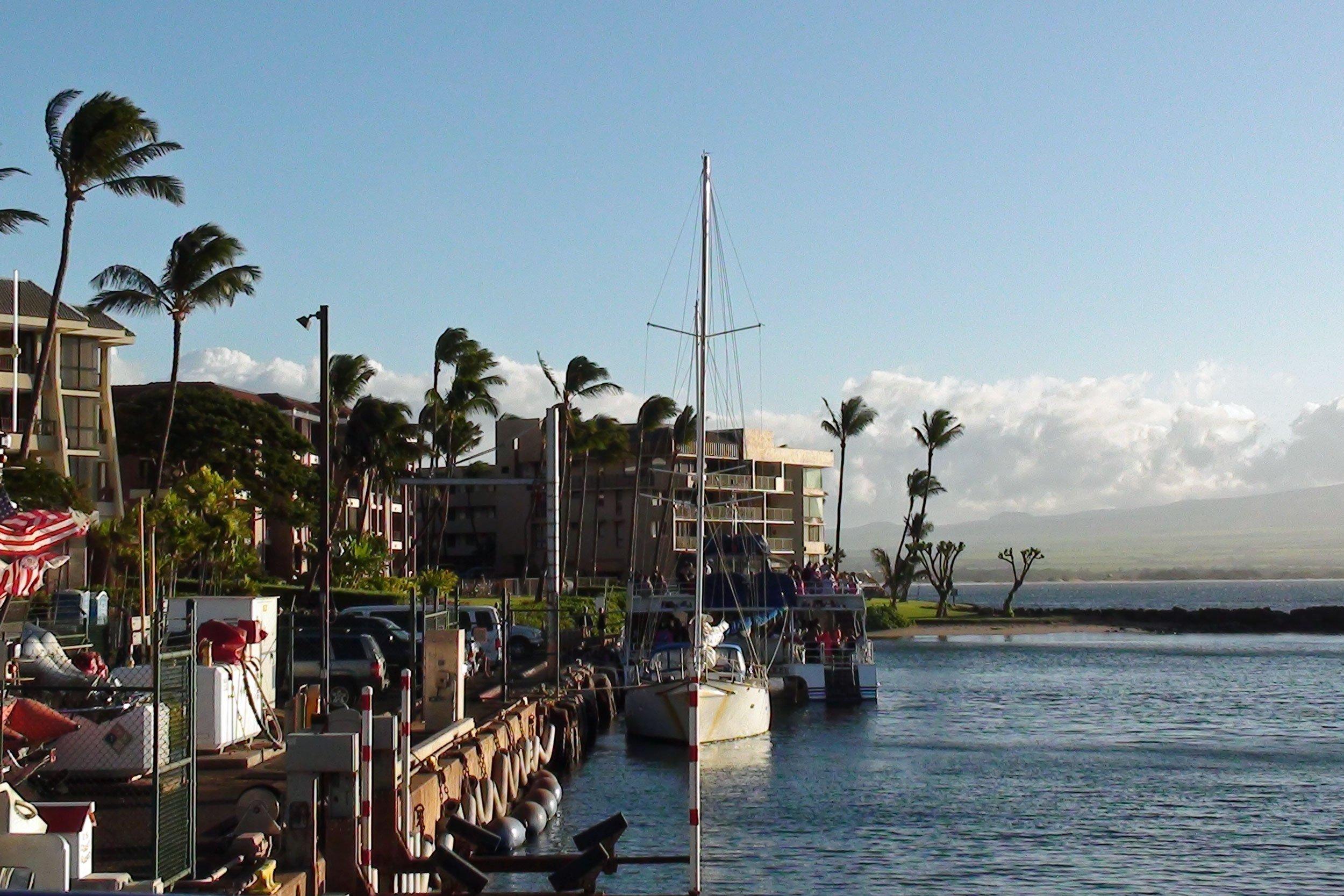Maalaea Harbor, Maui